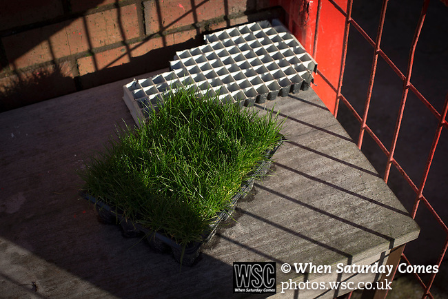 Witton Albion 1 Warrington Town 2, 26/12/2017. Wincham Park, Northern Premier League. Turf being grown in pots outside the groundsman's garage at Wincham Park, home of Witton Albion, pictured before their Northern Premier League premier division fixture with Warrington Town. Formed in 1887, the home team have played at their current ground since 1989 having relocated from the Central Ground in Northwich. With both team chasing play-off spots, the visitors emerged with a 2-1 victory, the winner being scored by Tony Gray in second half injury time, watched by a crowd of 503. Photo by Colin McPherson.