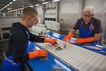 Fish processing facility in Den Helder, Netherlands
