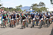 9th September 2017, Smithfield Forest, Cairns, Australia; UCI Mountain Bike World Championships; Nino Schurter (SUI) riding for Scott-Sram MTB Racing Team leads the field at the start of the elite mens cross country race;