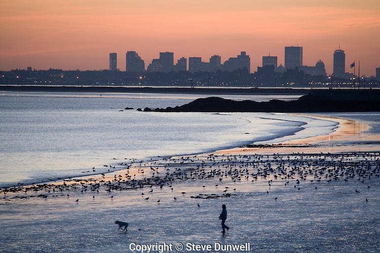 Boston skyline sunset, low tide winter, from Lynn, MA