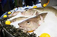 Nederland - Amsterdam - Januari 2019.  HORECAVA.  Verse vis van Seafarm. Foto Berlinda van Dam / Hollandse Hoogte
