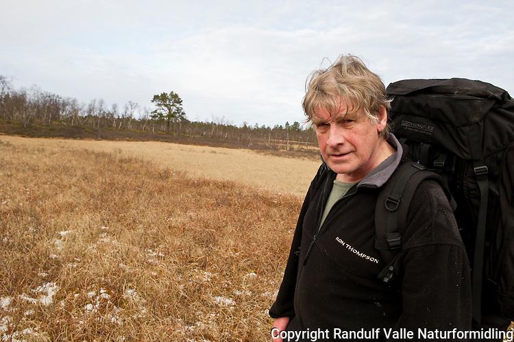 Mann krysser høstgul myr i Øvre Anarjokka nasjonalpark. ---- Man hiking.