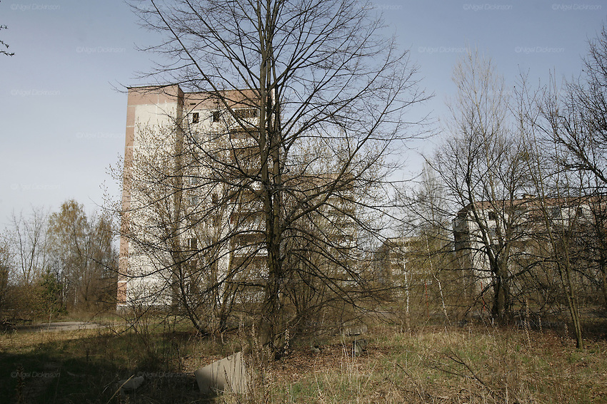 Chernobyl, Exclusion Zone, Ukraine. Housing estates  taken over by nature. Pripyat Town built 15 years before the Chernobyl reactor fire. The whole town was evacuated shortly after. The  Chernobyl Reactor, towns, plant and environs just before the 20th anniversary of the nuclear disaster.
