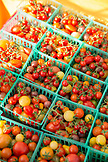 USA, Oregon, Ashland, Cherry tomatoes for sale at the Rogue Valley Growers and Crafters Market