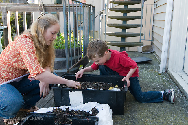 Berkeley CA Preschool teacher introducing four-year-old to use of worms to produce worm compost (vermicompost) and worm castings from decomposing food and plant waste in a worm bin  MR