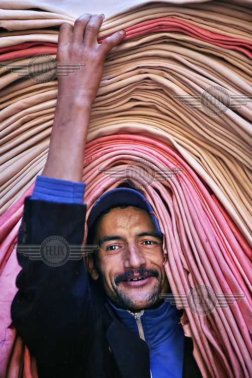 Man carrying animal skins that have been processed and coloured in a traditional tannery. Morocco is known for its leather products..