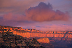 Morning light on the South Rim, from Moran Point, Grand Canyon National Park, Arizona