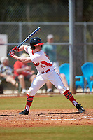 Illinois State Redbirds designated hitter Nick Zouras (14) at bat during a game against the Michigan State Spartans on March 8, 2016 at North Charlotte Regional Park in Port Charlotte, Florida.  Michigan State defeated Illinois State 15-0.  (Mike Janes/Four Seam Images)
