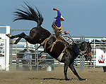 Tate Owens scores a 75 point saddle bronc ride at the Southeast Weld County CPRA Rodeo in Keenesburg, Colorado on August 12, 2006.