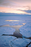 open water between ice floes reflects the sunset in pack ice in December, Antarctica, Weddell Sea