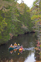Paddling along the Oswego River, Wharton State Forest, New Jersey
