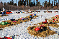 Robert Redington runs past resting teams as he leaves the Galena checkpoint during the 2017 Iditarod on Friday afternoon March 10, 2017.<br /> <br /> Photo by Jeff Schultz/SchultzPhoto.com  (C) 2017  ALL RIGHTS RESERVED