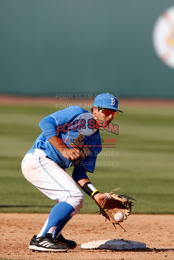 Trent Chatterton #8 of the UCLA Bruins during a game against the California Golden Bears at Jackie Robinson Stadium on March 23, 2013 in Los Angeles, California. (Larry Goren/Four Seam Images)