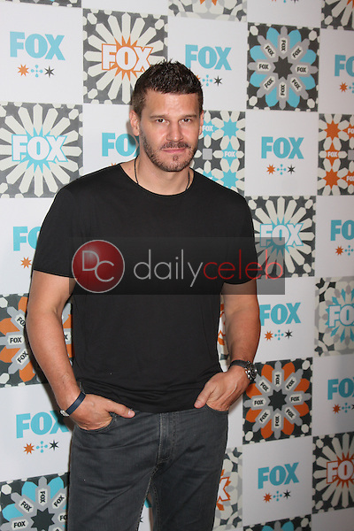 LOS ANGELES - JUL 20:  David Boreanaz at the FOX TCA July 2014 Party at the Soho House on July 20, 2014 in West Hollywood, CA