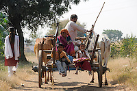 INDIA, Madhya Pradesh, Nimad region, Khargone , tribal farmer of cooperative Shiv Krishi Utthan Sanstha, family travels with bullock cart / INDIEN, Madhya Pradesh, Khargone, Adivasi farmer der Kooperative Shiv Krishi Utthan Sanstha, Familie auf einem Ochsenkarren