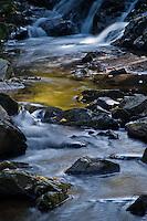 Fall color along Big Pup Creek in Marquette County Michigan's Upper Peninsula.
