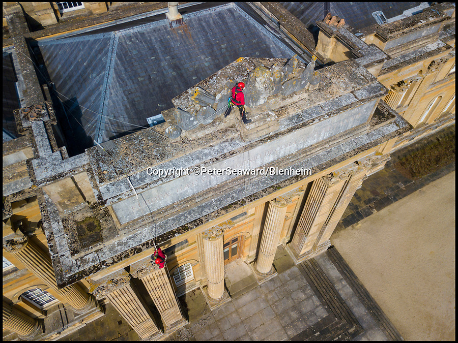 BNPS.co.uk (01202 558833)<br /> Pic: PeterSeaward/Blenheim/BNPS<br /> <br /> Abseiling conservationists needed a head for heights to tackle this tall order - scaling 82ft to inspect a 30-tonne marble bust of King Louis XIV.<br /> <br /> Rope access technicians Tom Brennan and Mark Fresch have been carrying out an inspection of the exterior of Blenheim Palace to check for any loose or damaged stonework.<br /> <br /> The hair-raising job brought them face-to-face with the massive 6.5ft head of France's famous Sun King, which was looted by the Duke of Marlborough in 1709.<br /> <br /> The work is part of an ongoing £40m restoration programme at the UNESCO World Heritage Site in Oxfordshire.