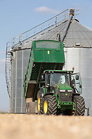 John Deere tractor and trailer tipping wheat into a grain bin  <br /> ©Tim Scrivener Photographer 07850 303986<br />      ....Covering Agriculture In The UK....