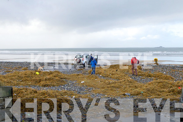 Banna car park covered in seaweed stones and sand on Sunday morning.
