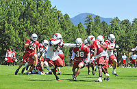 Jul 30, 2008; Flagstaff, AZ, USA; Arizona Cardinals running back (33) Steve Baylark rushes the ball as he is defended by safety (38) Dennis Keyes during training camp on the campus of Northern Arizona University. Mandatory Credit: Mark J. Rebilas-
