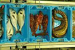 Denia  asta del pesce<br /> <br /> &copy;-Paolo della Corte