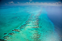 Reef detail, Belize, Caribbean Sea MesoAmerican Reef Reserve, Lighthouse Reef Atoll, Largest reef in Western Hemisphere. Aerial view