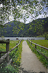 Path leading to Lake Resia, Italian/ Austrian border.