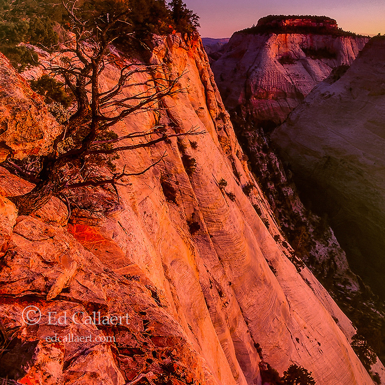 Sunset, East Rim Trail, Zion National Park, Utah