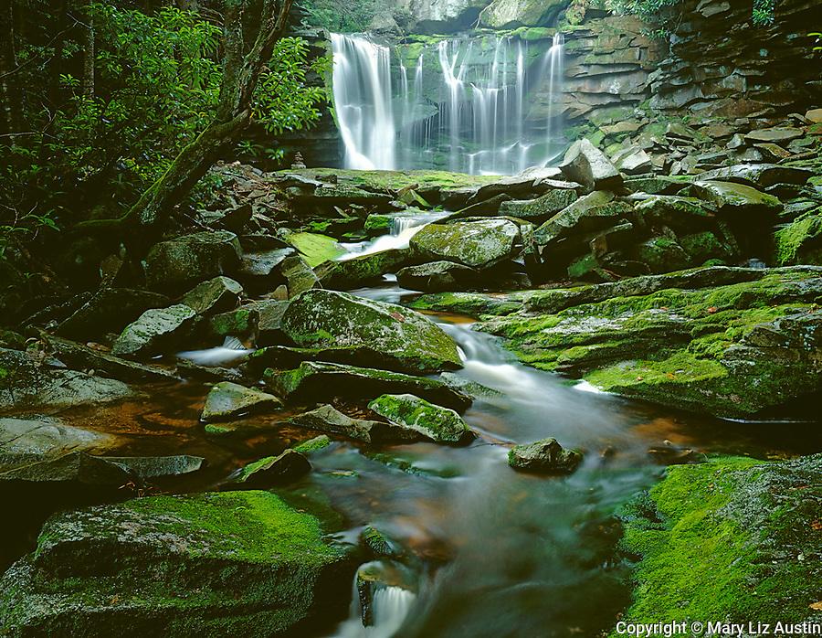 Blackwater Falls State Park, WV<br /> Elakala Falls on Shay Run flowing into Blackwater Gorge