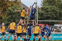 Tjiuee Uanivi of London Scottish collects during a line out during the Greene King IPA Championship match between London Scottish Football Club and Ealing Trailfinders at Richmond Athletic Ground, Richmond, United Kingdom on 8 September 2018. Photo by David Horn.