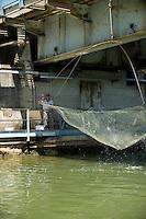 Pisa, canale dei Navicelli, pescatore con rete