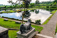 Bali, Karangasem. The Tirta Gangga water palace. This pool is not for swimming, but you can float around here in a small boat.