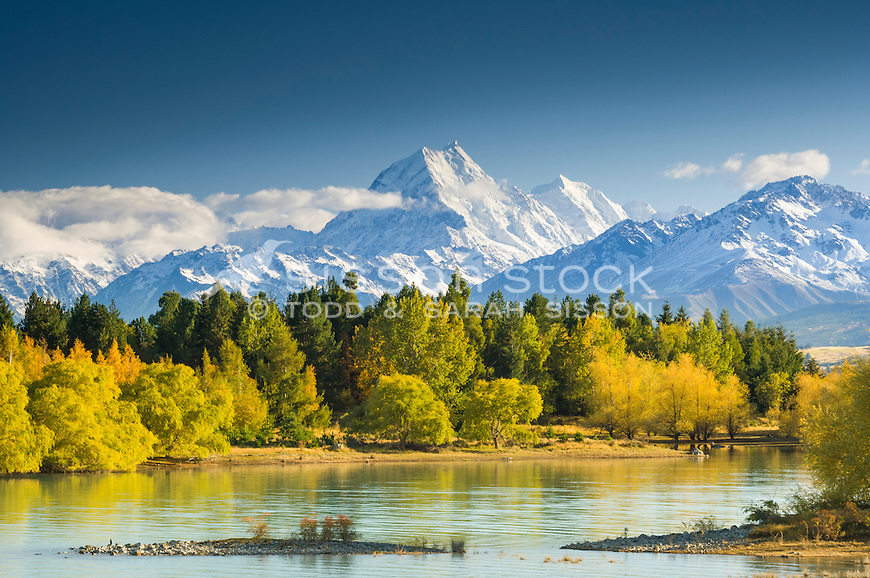 Premium Stock photo - Autumn colours on the shores of Lake Pukaki. Aoraki Mount Cook in background. Mackenzie Country, South Canterbury South Island New Zealand.