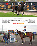 2013 Meadowlands Thoroughbreds