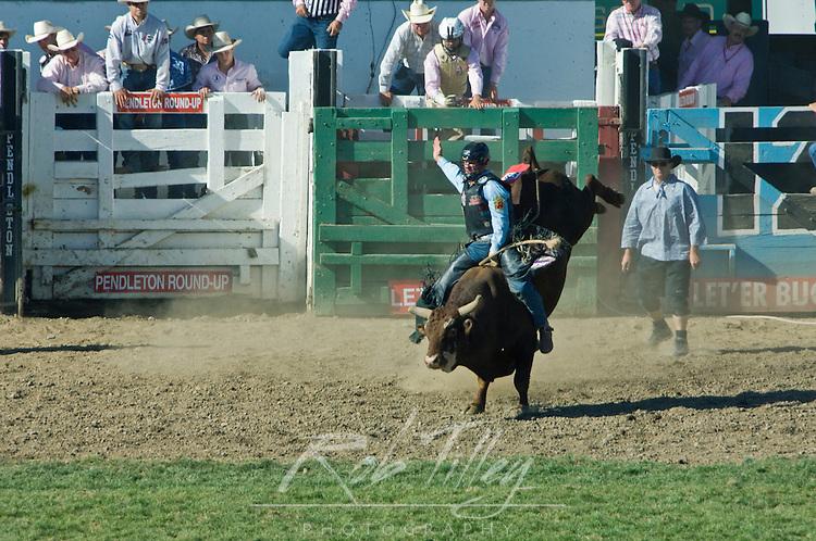 USA, OR, Pendleton, Pendleton Roundup, Bull Riding
