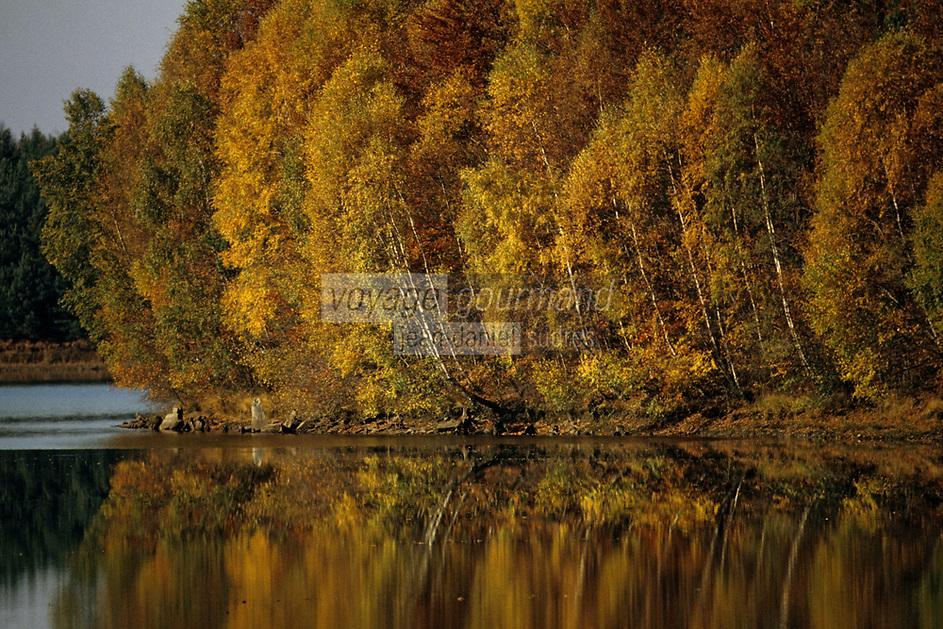 Europe/France/Limousin/23/Creuse/Plateau de Gentioux: Etang et arbres en automne