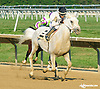 So Big Is Better winning at Delaware Park on 8/29/15