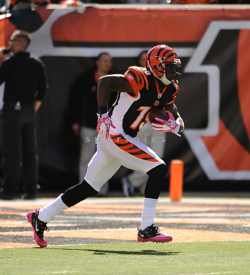 BRANDON TATE, of the Cincinnati Bengals in action during the Bengals game against the Buffalo Bills on October 2, 2011 at Paul Brown Stadium in Cincinnati, OH. The Bengals beat the Bills 23-20.