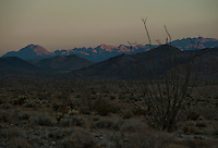 Twilight in Anza Borrego Desert.