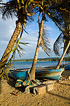 Fishing boats under palm trees along Playa Las Terranas during sunset, Las Terranas, Samana, Dominican Republic