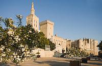Europe/France/Provence-Alpes-Cote d'Azur/84/ Vaucluse/Avignon:le Palais des Papes (Symbole du rayonnement de l'église sur l'Occident Chrétien au XIV° siècle)