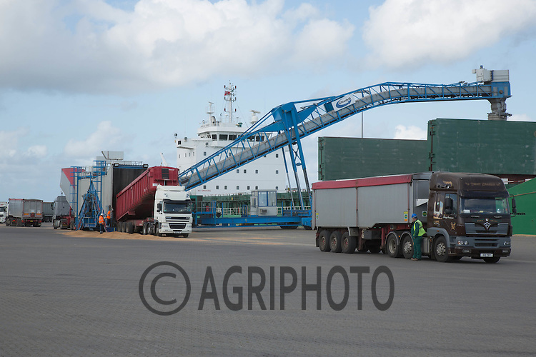 Grain boat being loaded at Great Yarmouth<br /> Picture Tim Scrivener 07850 303986