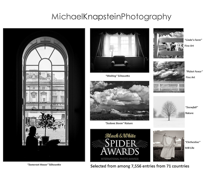 Seven photographs by Michael Knapstein were recognized in the 11th Annual Black and White Spider Awards, one of the world's largest competitions for black and white photography.