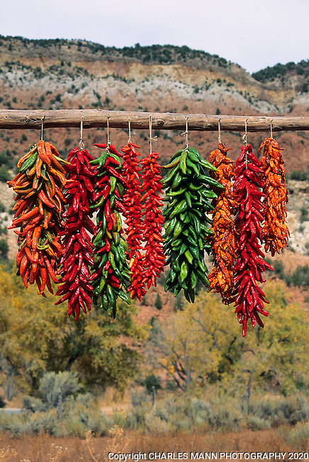 Colorful chile ristras hang out to dry in the autumn sun of New Mexico