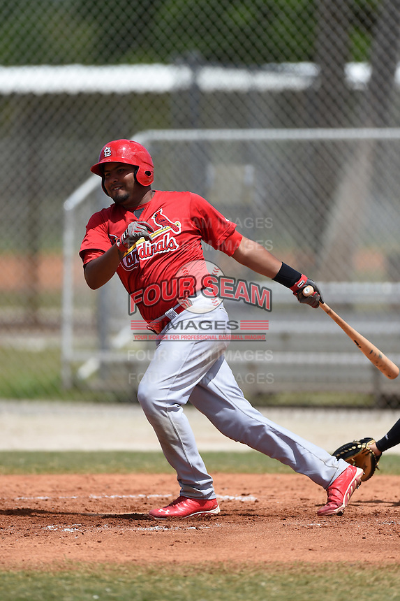 St. Louis Cardinals Ronnierd Garcia (38) during a minor league spring training game against the New York Mets on April 1, 2015 at the Roger Dean Complex in Jupiter, Florida.  (Mike Janes/Four Seam Images)