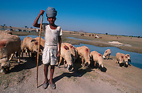 INDIA, Rajasthan, children work as shepherds at their parents farm during the day, at night they attend the Tilonia barefoot college / INDIEN Rajasthan Tilonia , Kinder arbeiten als Hirten tagsueber bei ihren Familien in der Landwirtschaft, abends gehen sie in das barefoot college, eine Abendschule der NGO von Bunker Roy