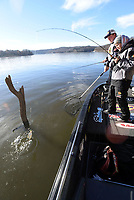 NWA Democrat-Gazette/FLIP PUTTHOFF<br />Tiffany Usrey of Springdale catches a crappie Nov. 24 2017 near Horseshoe Bend park on Beaver Lake. Her husband, Payton, stands by with the net. The couple fished around submerged timber and docks to catch several crappie.
