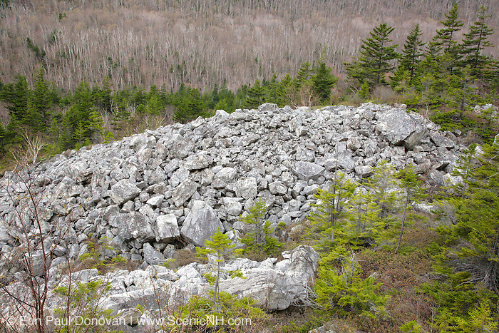 Talus field on the side of the Appalachian Trail, near Whitewall Mountain, during the spring months in the White Mountains of New Hampshire USA. This trail follows the old Zealand Valley Logging Railroad bed.