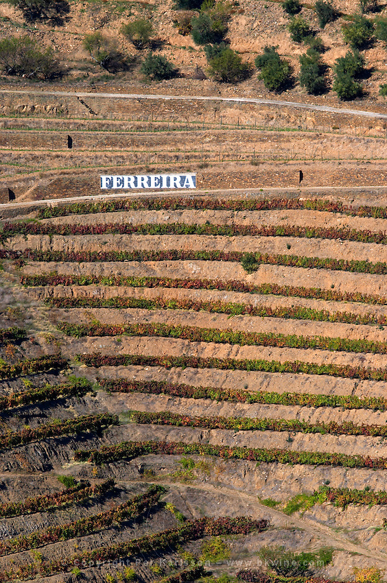 vineyards ferreira sign douro portugal