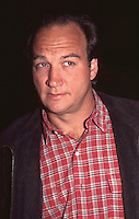 Jim Belushi 1996 by Jonathan Green